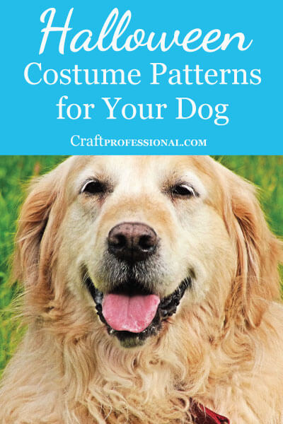 5 Dog Halloween Costume Patterns