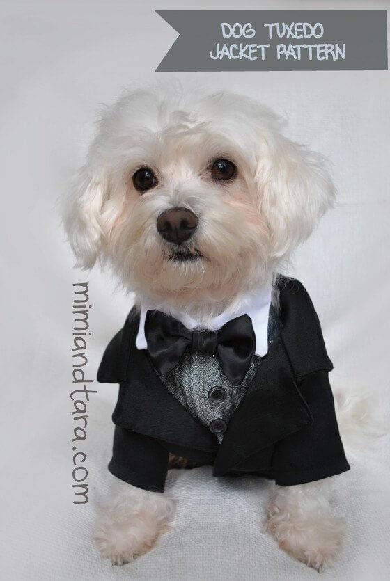 Tuxedo jacket pattern for your dog