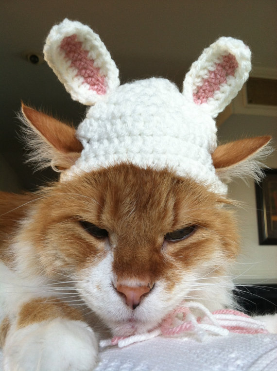Cat bunny hat pattern by The Blooming Pot