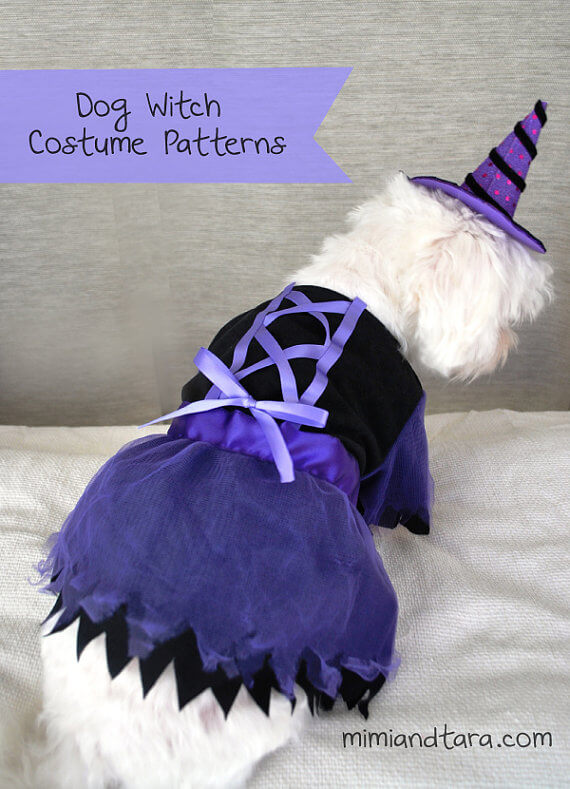 Witch's halloween costume pattern for your dog by Mimi & Tara