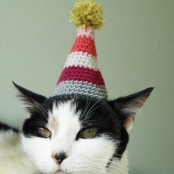 Cat birthday hat pattern by xmoonbloom