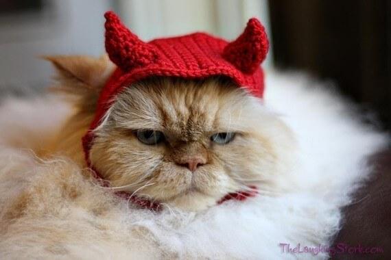 Cat Halloween Pattern